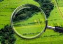 Земельна реформа на Сумщині: експерти відповіли на найрозповсюдженіші питання місцевих жителів